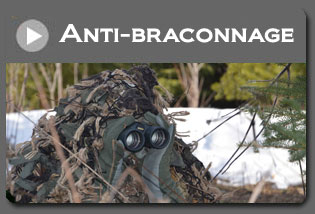 Formations anti braconnage